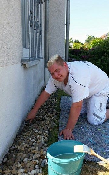 Algen und Mossbefall vorbeugen